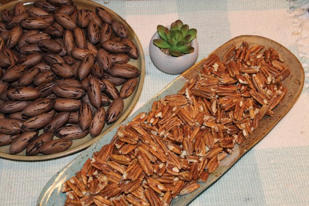 The season's pecans, like these from Jan Swoope's front yard, are popular in dishes for the holiday table. But there are also dozens of ways to quickly turn shelled pecans into delicious snacks. Read on for recipes.