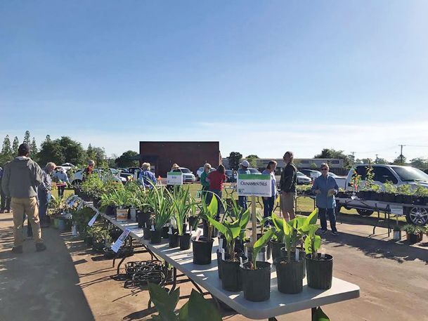 The Mississippi State University Extension Service's Master Gardener program provides horticultural training for volunteers. Some county Master Gardeners hold educational seminars for the public and host events, like the 2018 Lowndes County plant sale pictured.
