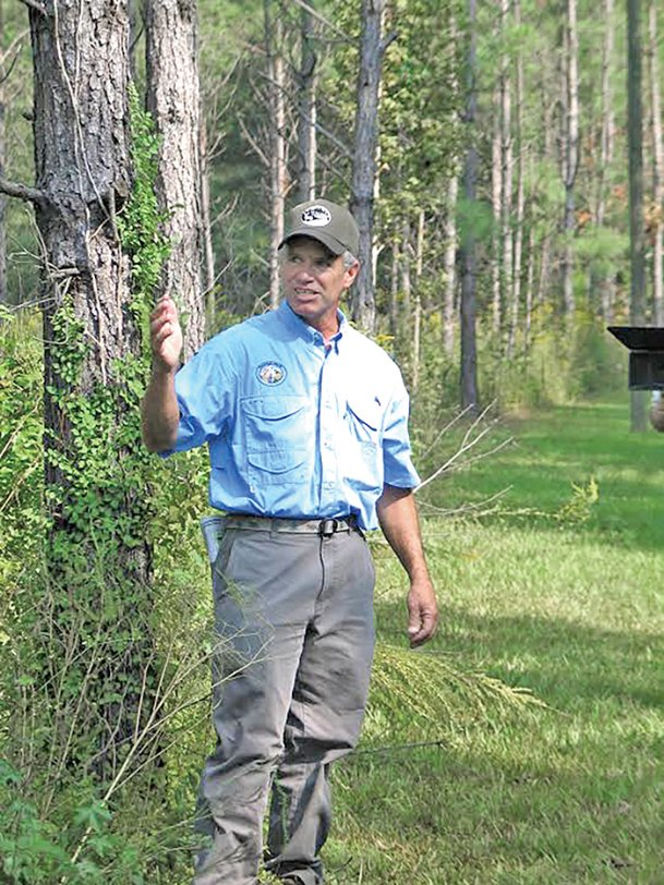Bobby Watkins expects to have his 100 acres of pine cleared in a few weeks. Although the final harvest will produce only about a quarter of the revenue projected when he planted the trees 32 years ago, he said he doesn't regret his decision.