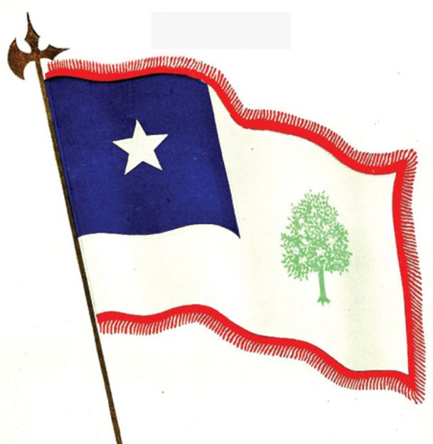 The Magnolia Flag was Mississippi's flag from 1861 to 1894. Image is from the Mississippi Official and Statistical Register of 1908.