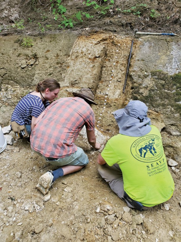Paleontologists work at a site at a creek off Highway 182 in Starkville earlier this week, searching for evidence of a mass extinction 66 million years ago believed to have been caused when a 10-kilometer asteroid hit the Yucatan Peninsula. Based on the shading of the rock, scientists can tell whether fossils or earth samples are from the Cretaceous Period - before the mass extinction - or the Paleocene Period afterward.  The team, made up of scientists from the area as well as Museum of Natural Science in Jackson, American Museum of Natural History in New York, Brooklyn College and the University of New Mexico, hopes their research will help scientists understand more about mass extinction events.