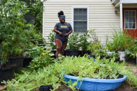 Omini Parks works in her garden on Thursday outside her home in Starkville. Parks started the vegetable garden with her daughter, Gibson, 5, as an educational activity over spring break. / Photo by: Claire Hassler/Dispatch Staff
