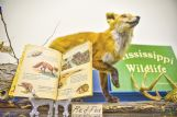 Many Little Golden Books are about animals. These are displayed with a wildlife exhibit at the museum.