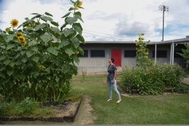 Assistant Principal Katie Ballard walks near a sunflower garden on Wednesday at Oak Hill Academy in West Point. Ballard said last school year the kids had fun watching the flowers grow taller than themselves and then taller than their teachers. She said students will be surprised by how tall they are this year when they see them in two weeks on the first day of school. / Photo by: Claire Hassler/Dispatch Staff