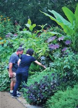 Felder Rushing sometimes passes on plants to guerrilla gardener Jesse Yancy, left, who shares proven hardy plants with neighbors.