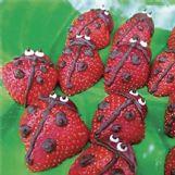 Chocolate striping turns strawberries into ladybugs.
