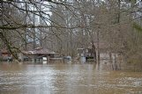 Pictured in this photo is 47 Pine Ave., home to Becky Cox and her three children. The family evacuated their home Thursday afternoon after their backyard and driveway were submerged underwater. Water did not enter the house when they left, Cox said.