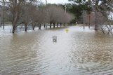 Flood waters cover Propst Park, off Main Street, in Columbus Thursday afternoon. Columbus Public Information Officer Joe Dillon said officials do not expect any permanent damage to the park.