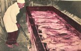 Sam Harris works his barbecue magic with pork and lamb on the pit at Magowah in this 1959 Birmingham News photo.